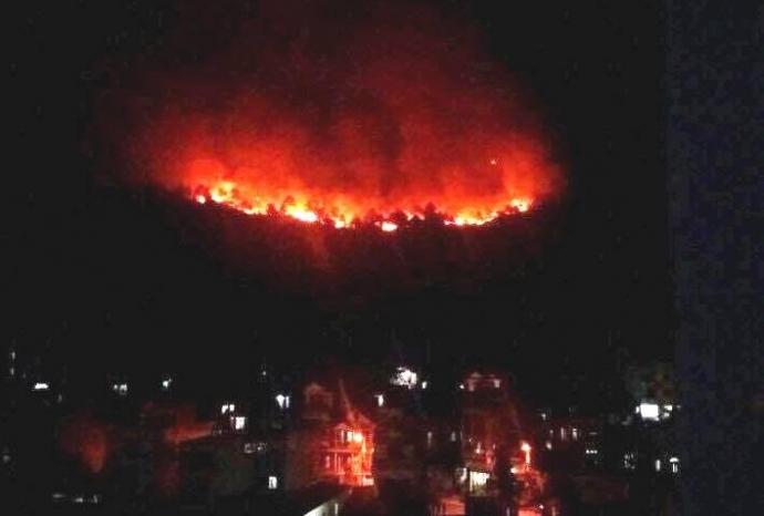 Cháy rừng dữ dội ngay giữa TP. Hạ Long