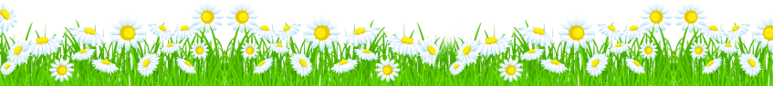[Vector] Bộ Hoa trang trí chân tường đẹp file Coreldraw