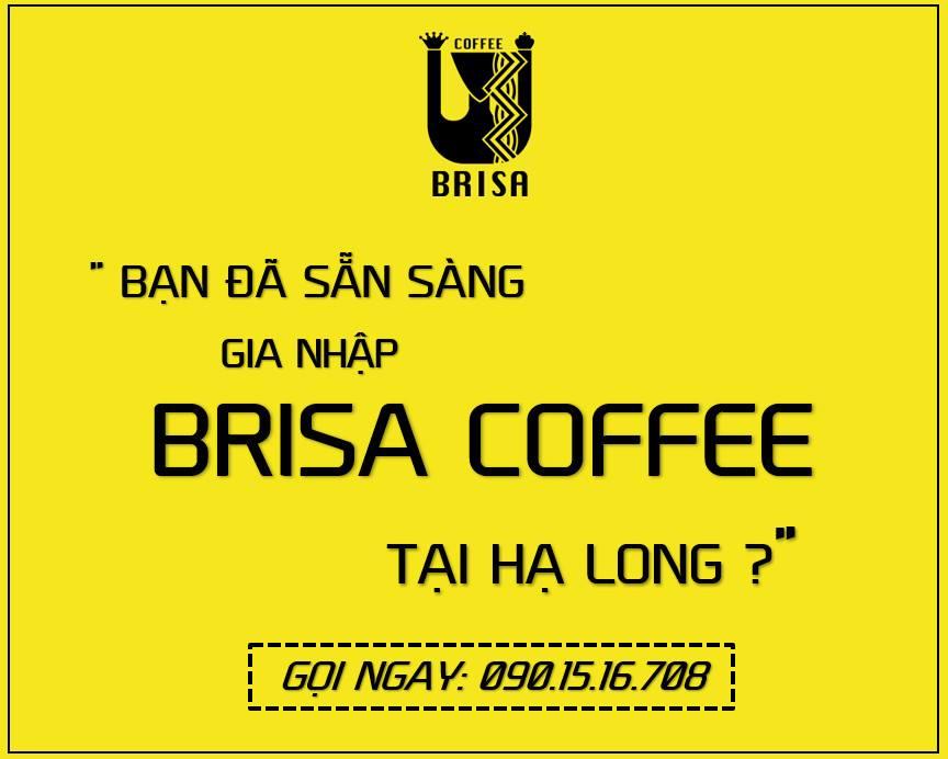 [Hạ Long] Brisa Coffee Tuyển Dụng 10 Vị Trí Nhân Sự