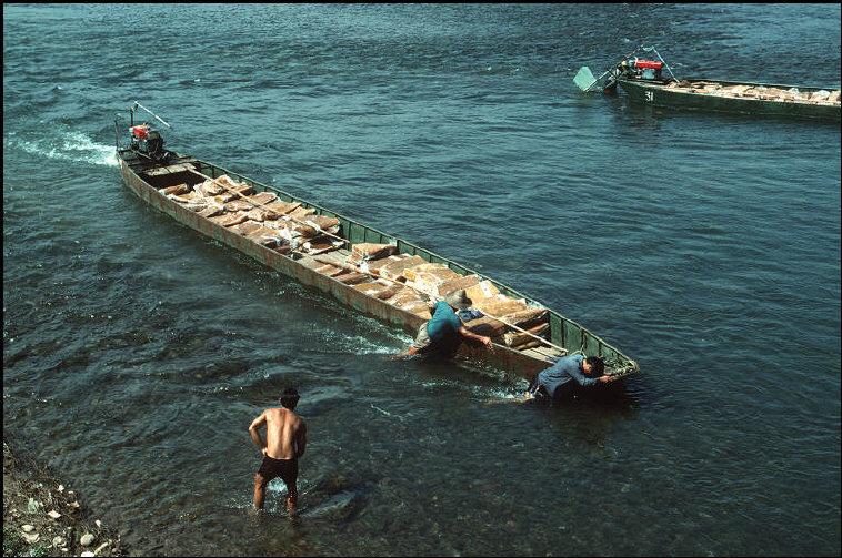 nhung-hinh-anh-tuyet-voi-ve-quang-ninh-nam-1994-1995-15.jpg
