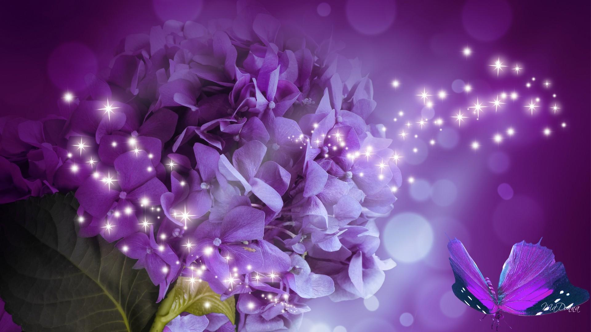 цветок фиолетовый  № 814263 загрузить