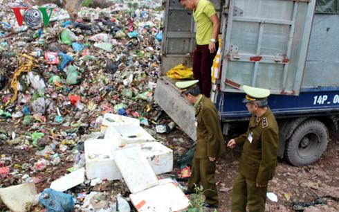 Quảng Ninh tiêu hủy 1,1 tấn cá nhập lậu không rõ nguồn gốc