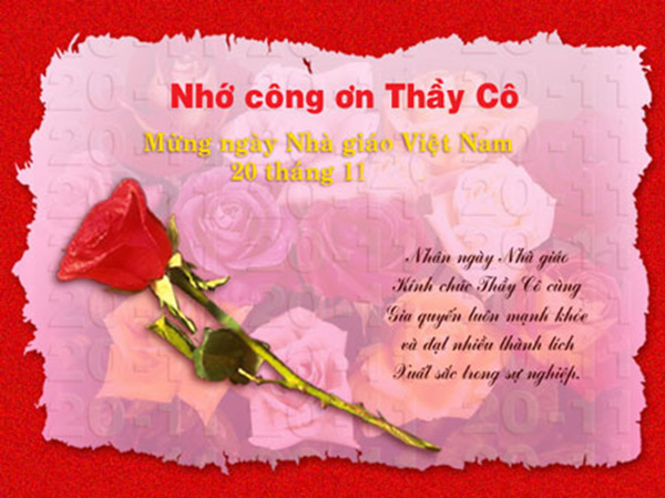 Tuyển tập những bài thơ hay về thầy cô giáo ngày 20-11