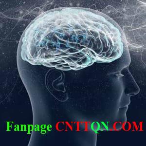 Diễn đàn CNTT Việt Nam